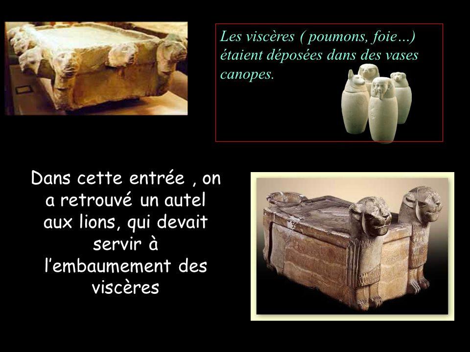 Les viscères ( poumons, foie…) étaient déposées dans des vases canopes.