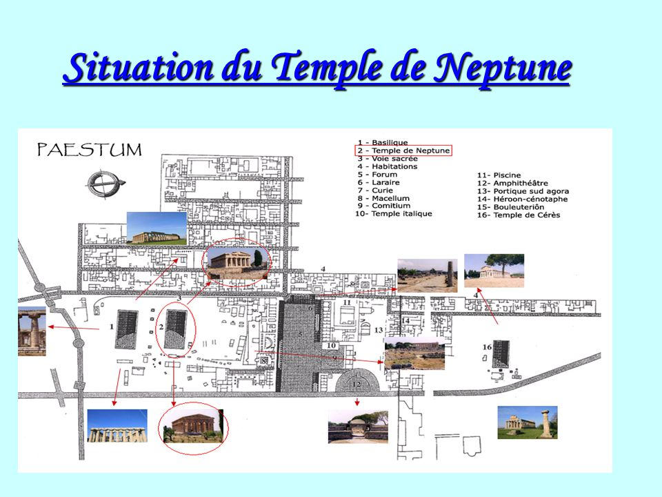 Situation du Temple de Neptune