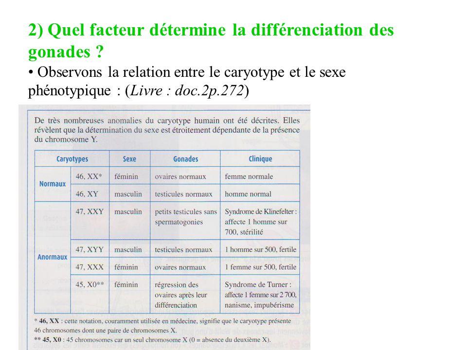 2) Quel facteur détermine la différenciation des gonades