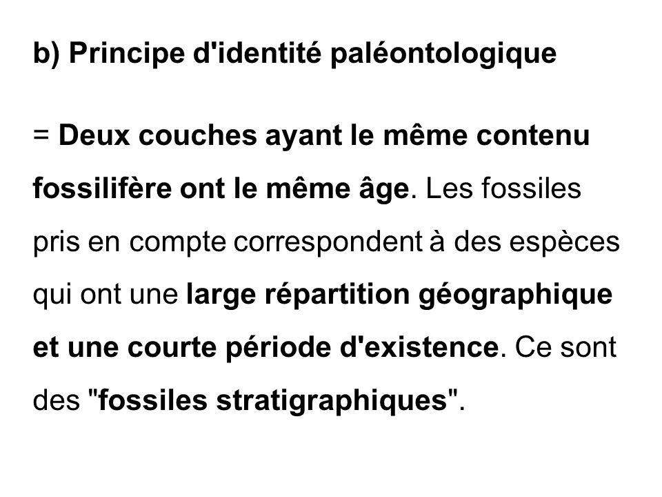b) Principe d identité paléontologique