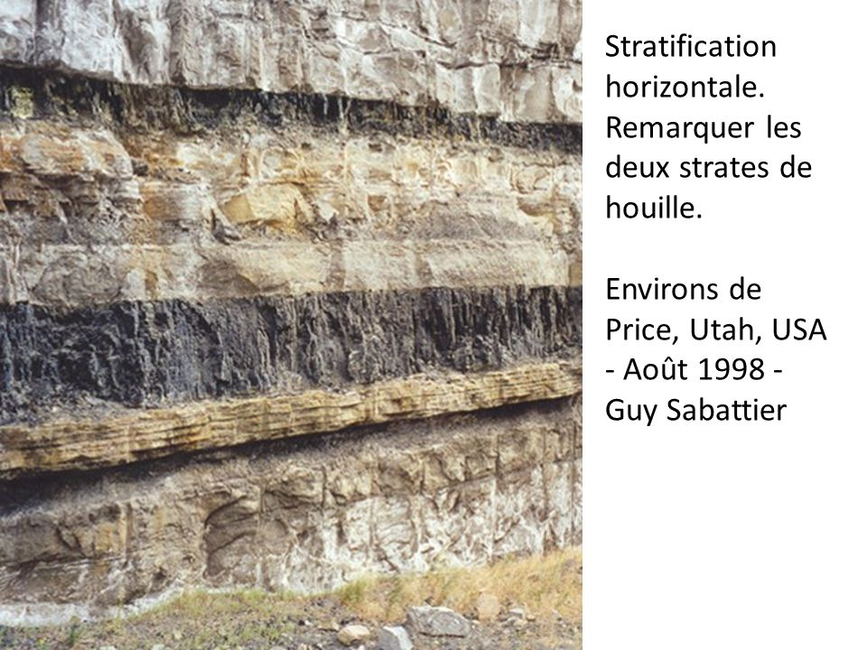 Stratification horizontale. Remarquer les deux strates de houille.