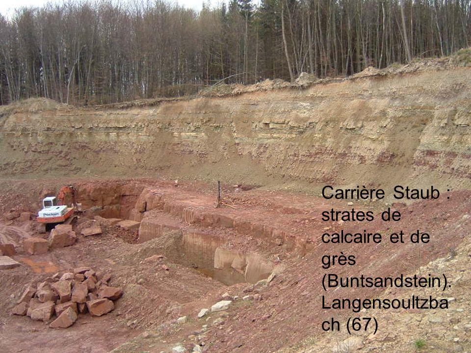Carrière Staub : strates de calcaire et de grès (Buntsandstein).
