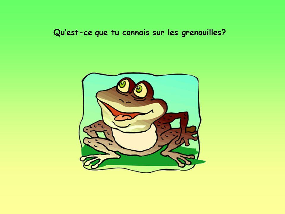 Qu'est-ce que tu connais sur les grenouilles