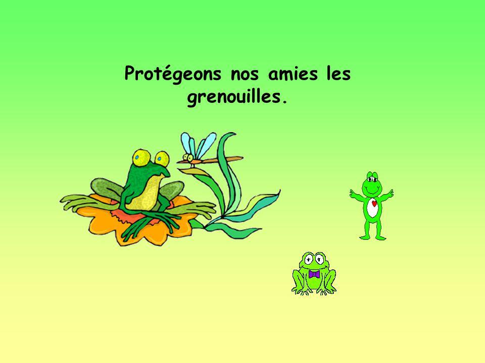 Protégeons nos amies les grenouilles.