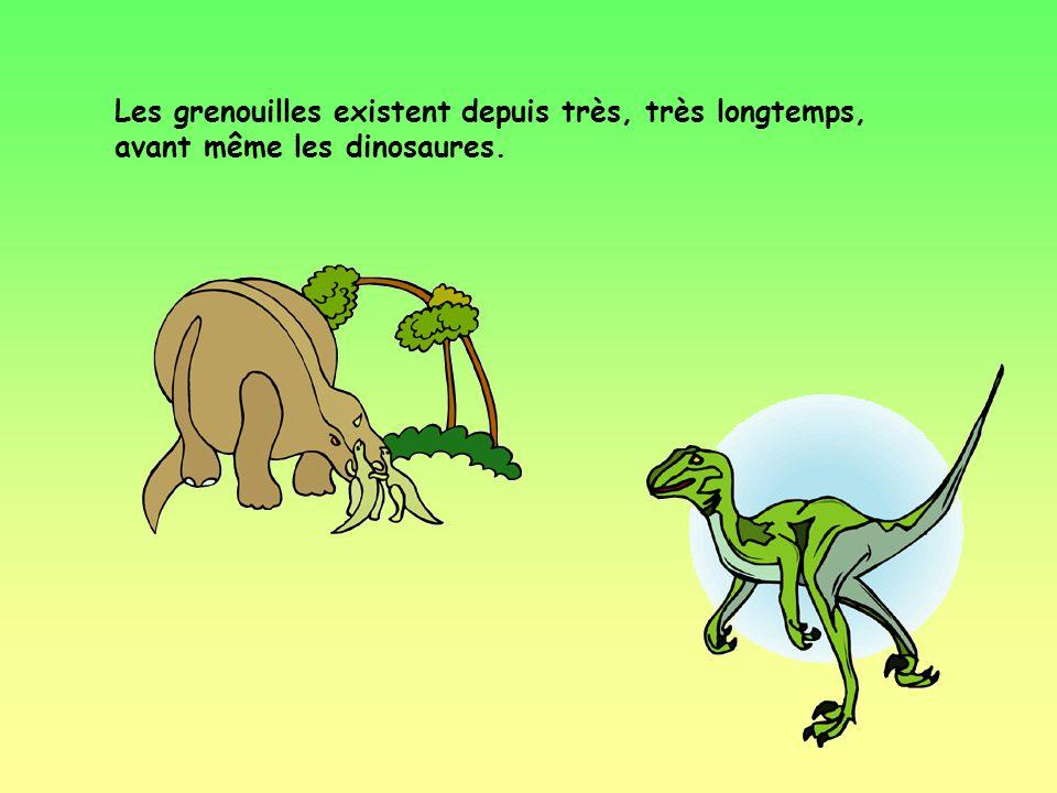 Les grenouilles existent depuis très, très longtemps, avant même les dinosaures.