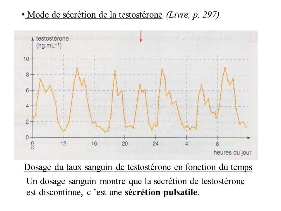 Mode de sécrétion de la testostérone (Livre, p. 297)