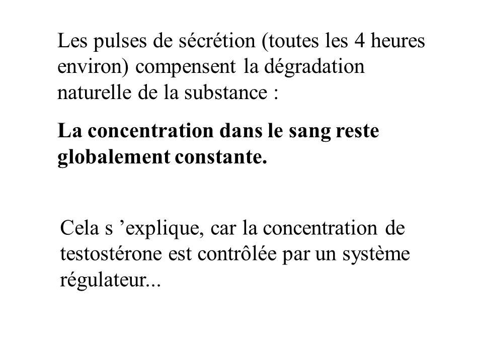 Les pulses de sécrétion (toutes les 4 heures environ) compensent la dégradation naturelle de la substance :