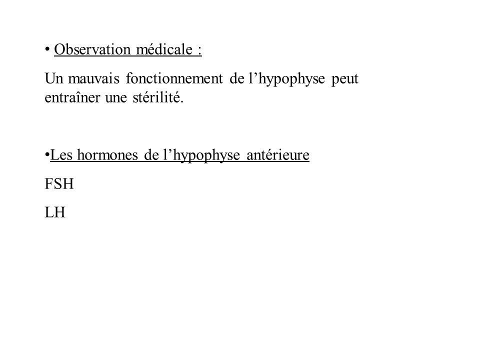 Observation médicale :