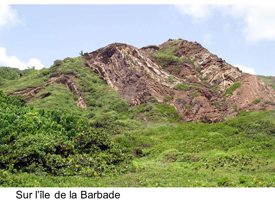 Sur l'île de la Barbade