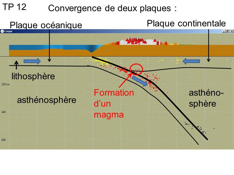TP 12 Convergence de deux plaques : Plaque continentale. Plaque océanique. lithosphère. Formation d'un magma.