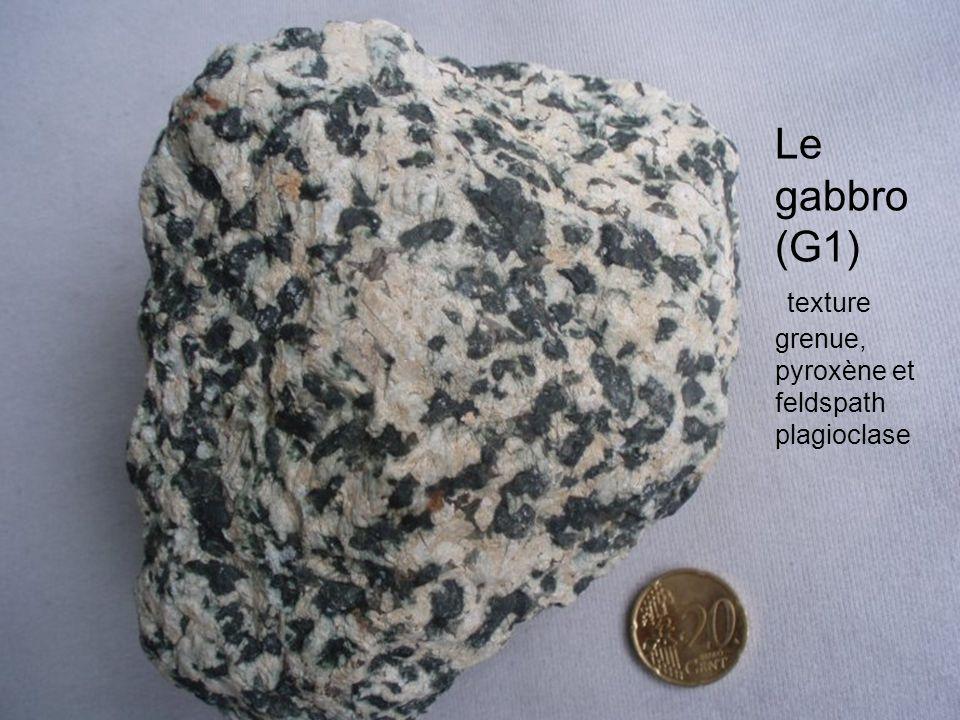 Le gabbro (G1) texture grenue, pyroxène et feldspath plagioclase