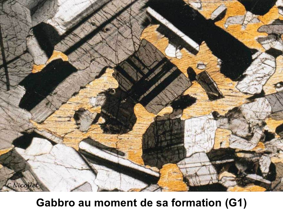 Gabbro au moment de sa formation (G1)