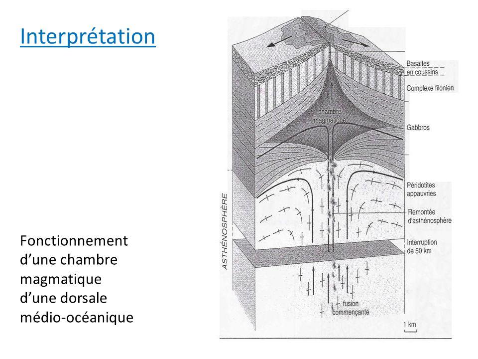 Interprétation Fonctionnement d'une chambre magmatique d'une dorsale médio-océanique