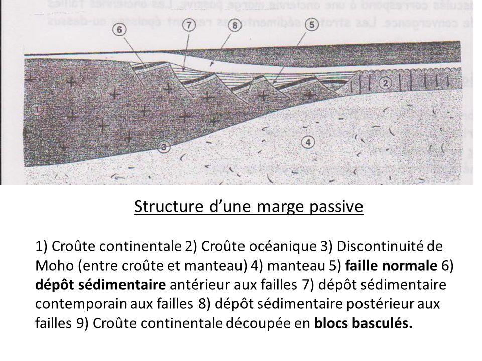 Structure d'une marge passive