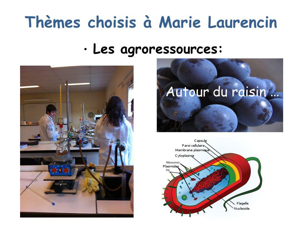 Thèmes choisis à Marie Laurencin