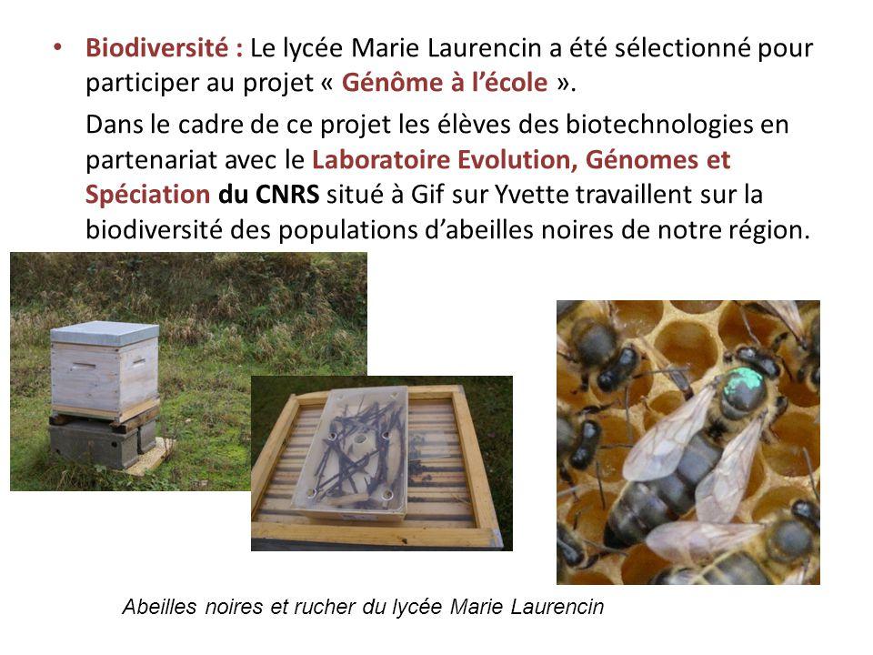 Biodiversité : Le lycée Marie Laurencin a été sélectionné pour participer au projet « Génôme à l'école ».