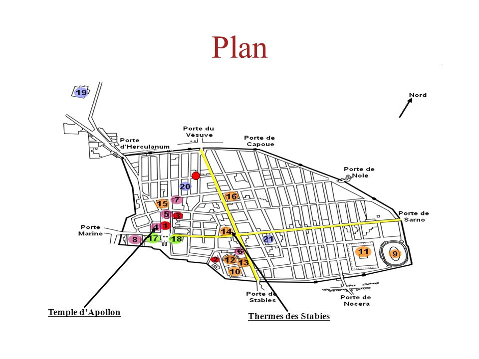 Plan Temple d'Apollon Thermes des Stabies