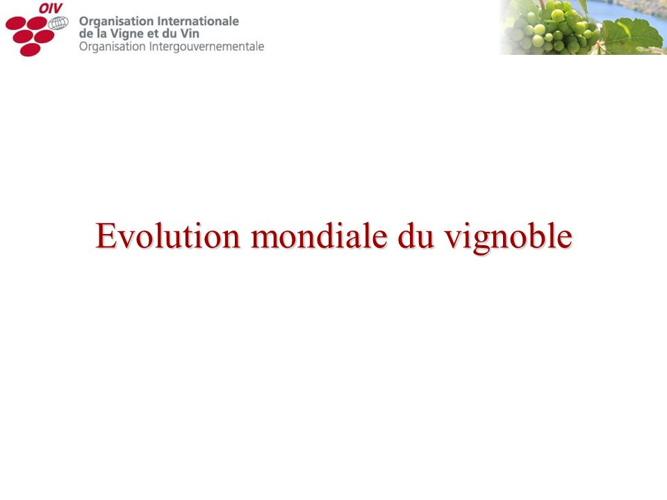 Evolution mondiale du vignoble
