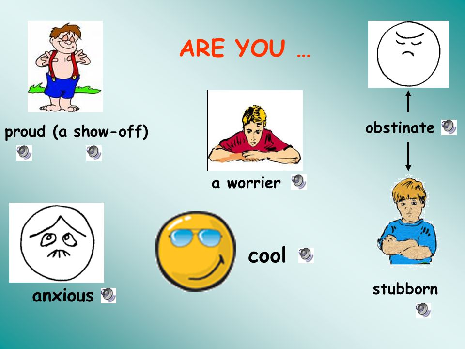 ARE YOU … obstinate proud (a show-off) a worrier cool stubborn anxious