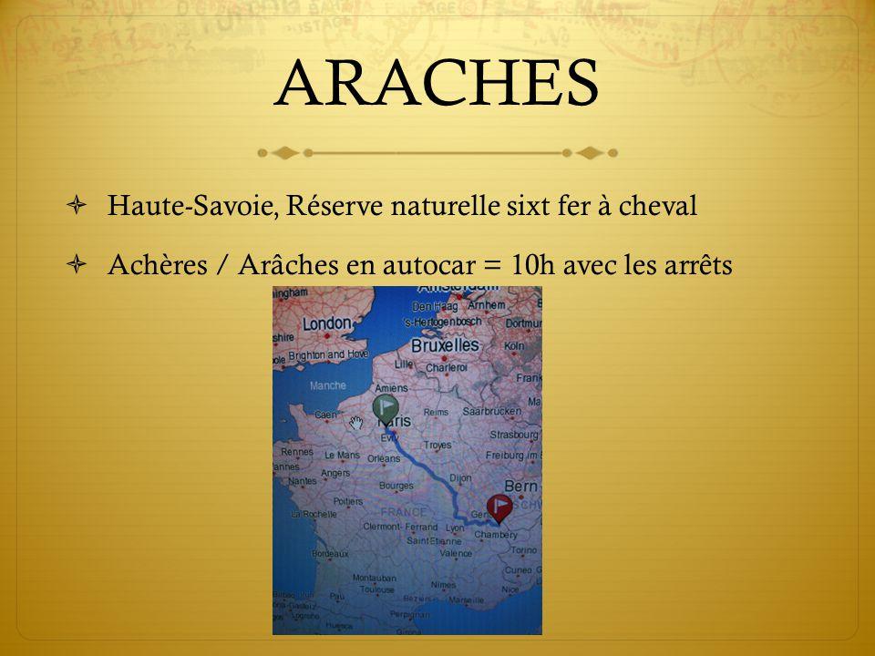 ARACHES Haute-Savoie, Réserve naturelle sixt fer à cheval