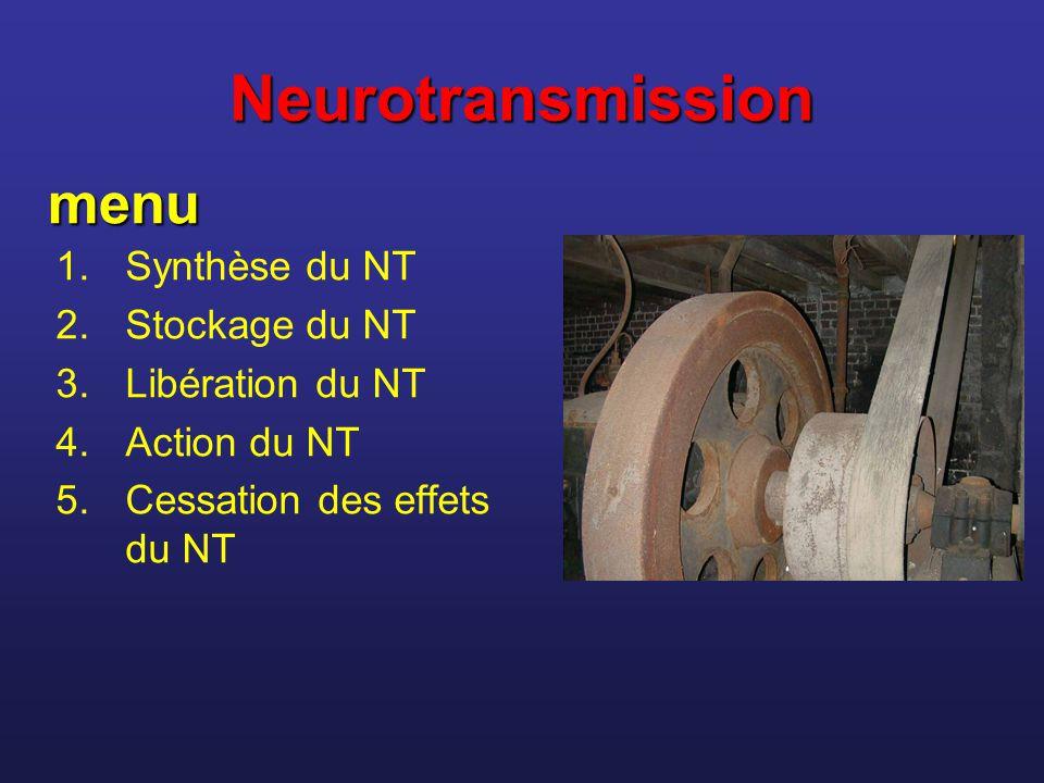 Neurotransmission menu Synthèse du NT Stockage du NT Libération du NT