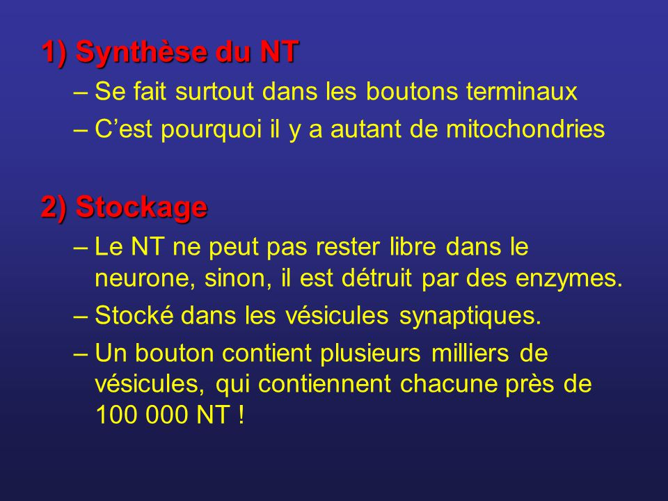 1) Synthèse du NT 2) Stockage