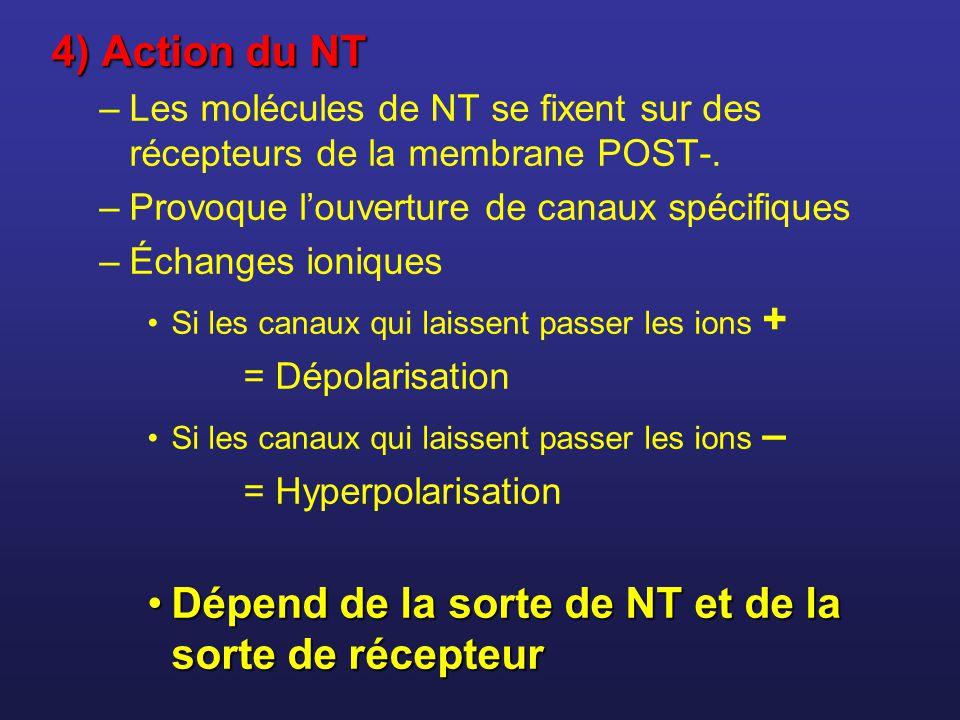 Dépend de la sorte de NT et de la sorte de récepteur
