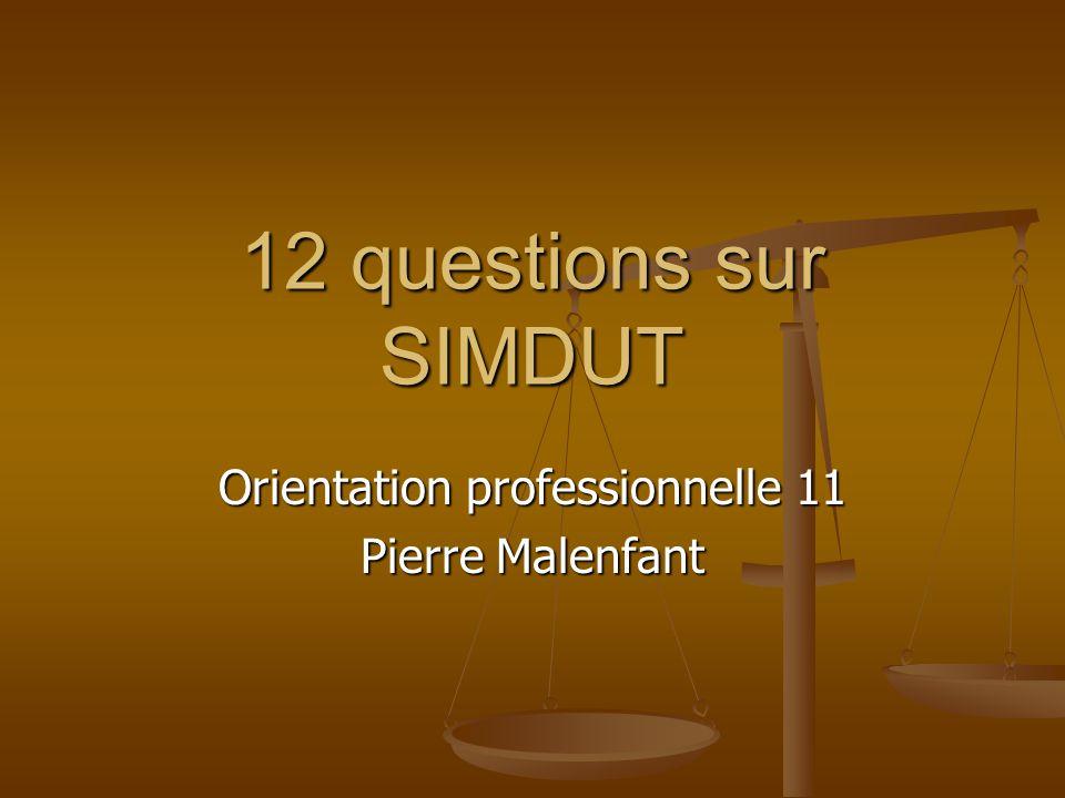 Orientation professionnelle 11 Pierre Malenfant