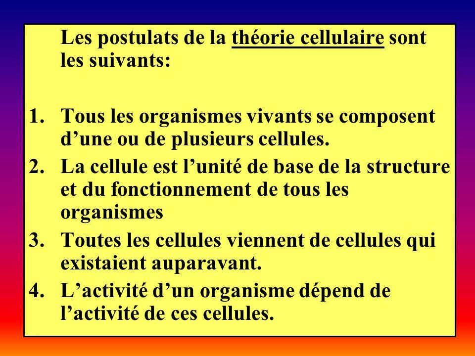 Les postulats de la théorie cellulaire sont les suivants: