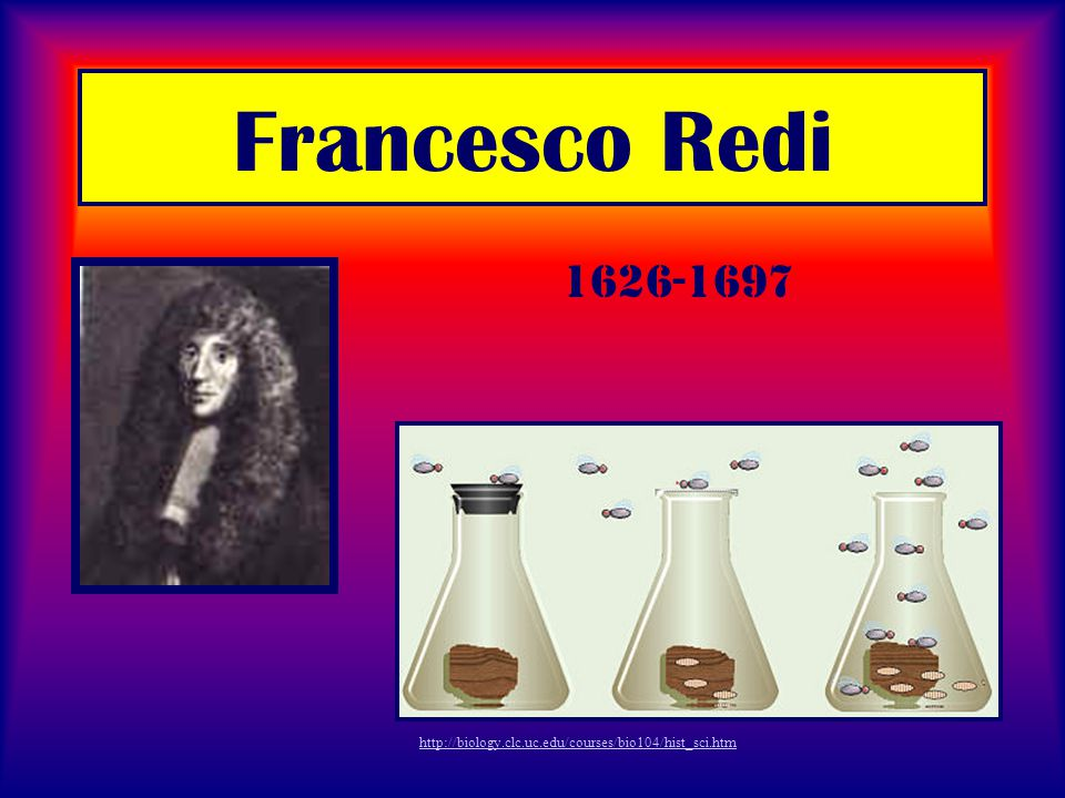 Francesco Redi 1626-1697 http://biology.clc.uc.edu/courses/bio104/hist_sci.htm