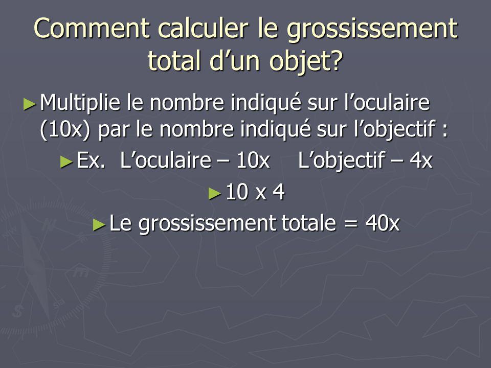 Comment calculer le grossissement total d'un objet