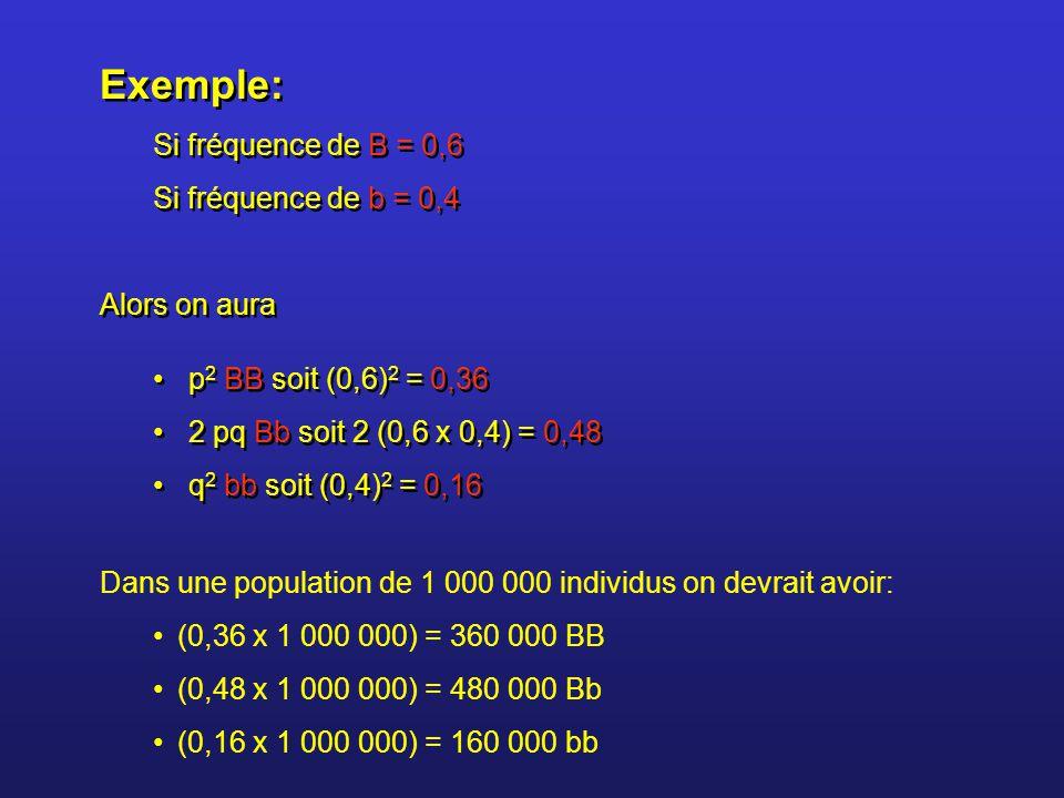 Exemple: Si fréquence de B = 0,6 Si fréquence de b = 0,4 Alors on aura