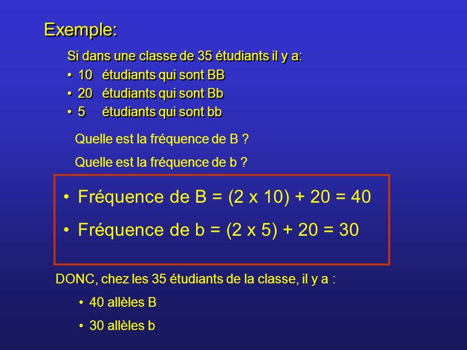 Exemple: Fréquence de B = (2 x 10) + 20 = 40