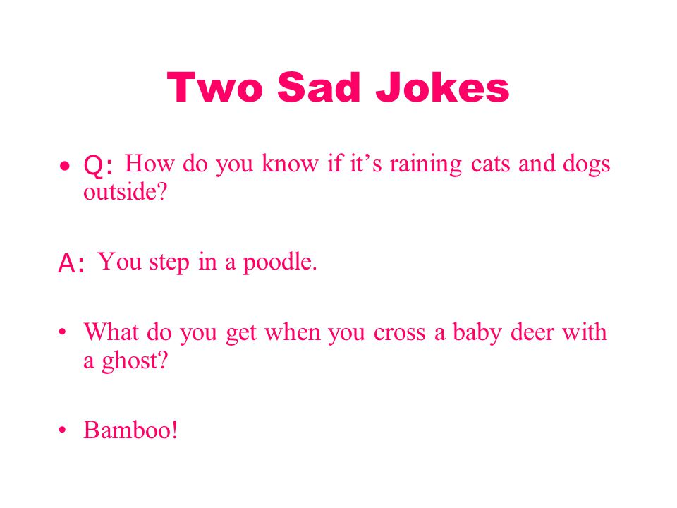 Two Sad Jokes Q: How do you know if it's raining cats and dogs outside A: You step in a poodle.