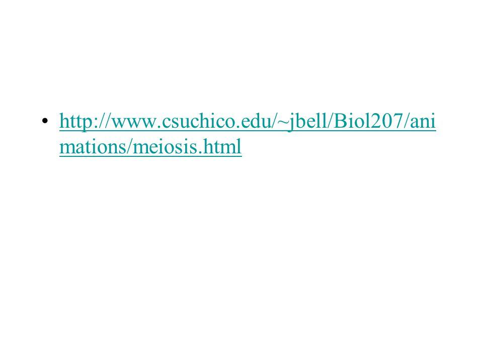 http://www.csuchico.edu/~jbell/Biol207/animations/meiosis.html