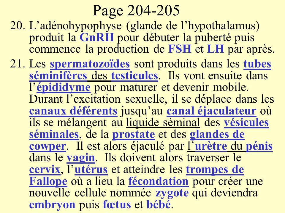 Page 204-205 L'adénohypophyse (glande de l'hypothalamus) produit la GnRH pour débuter la puberté puis commence la production de FSH et LH par après.