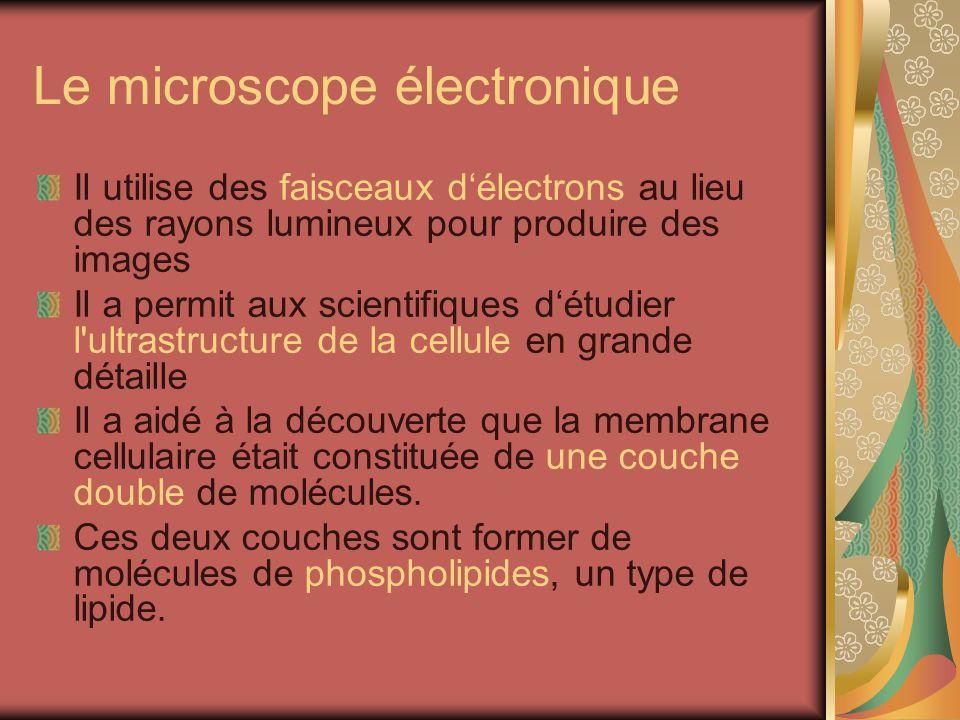 Le microscope électronique
