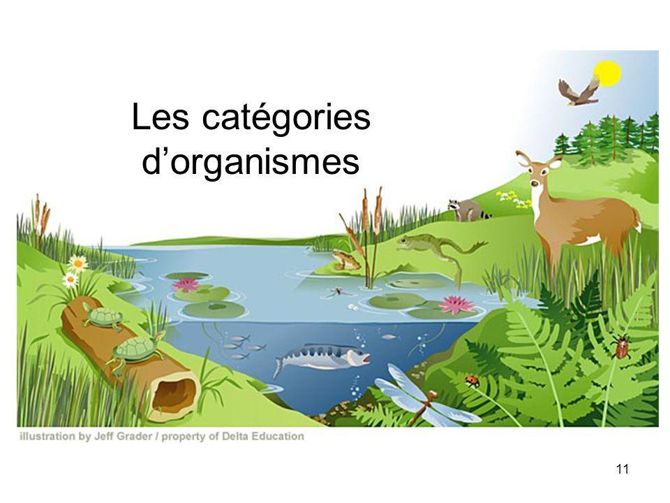Les catégories d'organismes