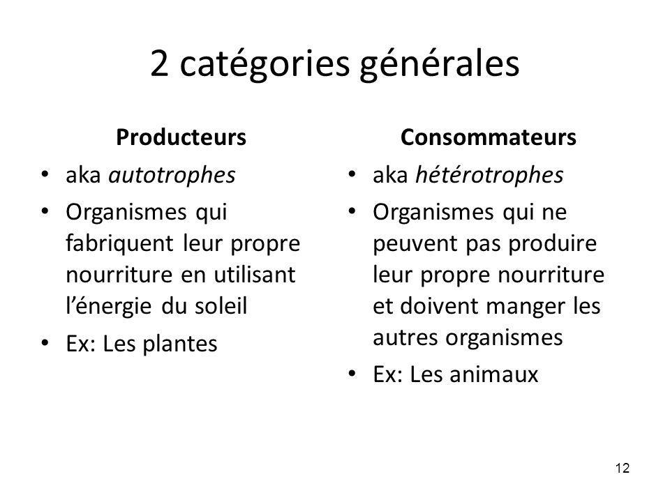 2 catégories générales Producteurs aka autotrophes