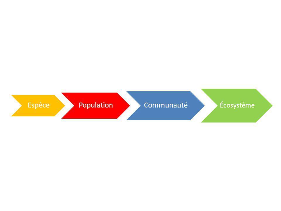 Espèce Population Communauté Écosystème