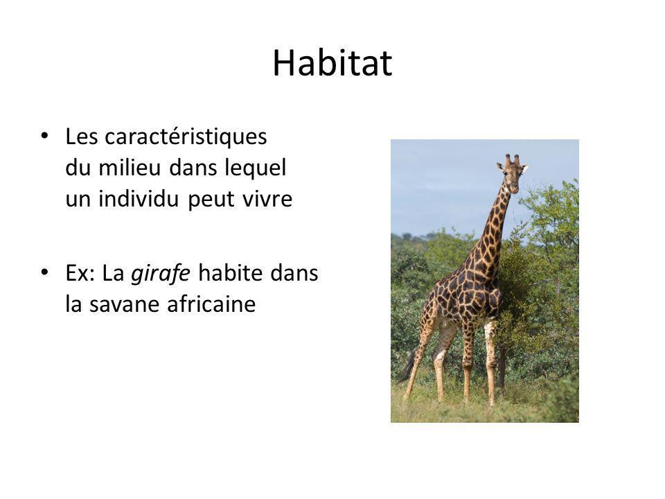 Habitat Les caractéristiques du milieu dans lequel un individu peut vivre.