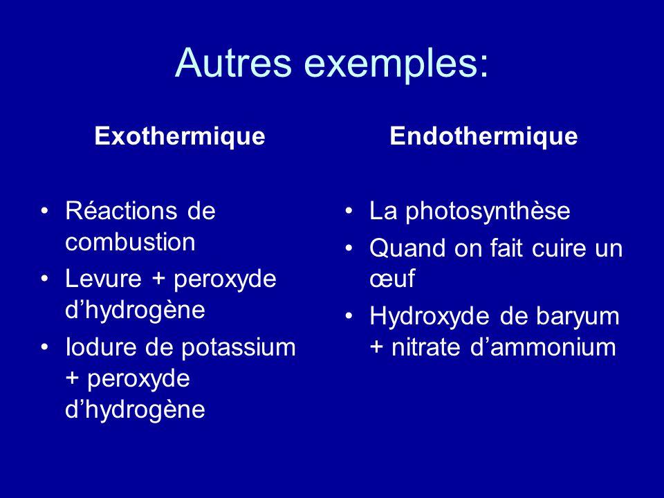 Autres exemples: Exothermique Réactions de combustion