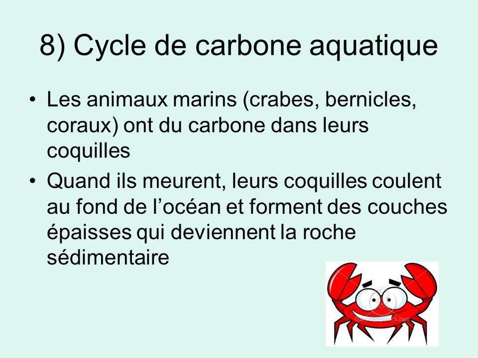 8) Cycle de carbone aquatique