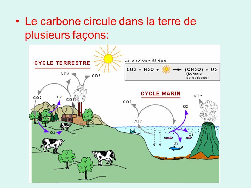 Le carbone circule dans la terre de plusieurs façons: