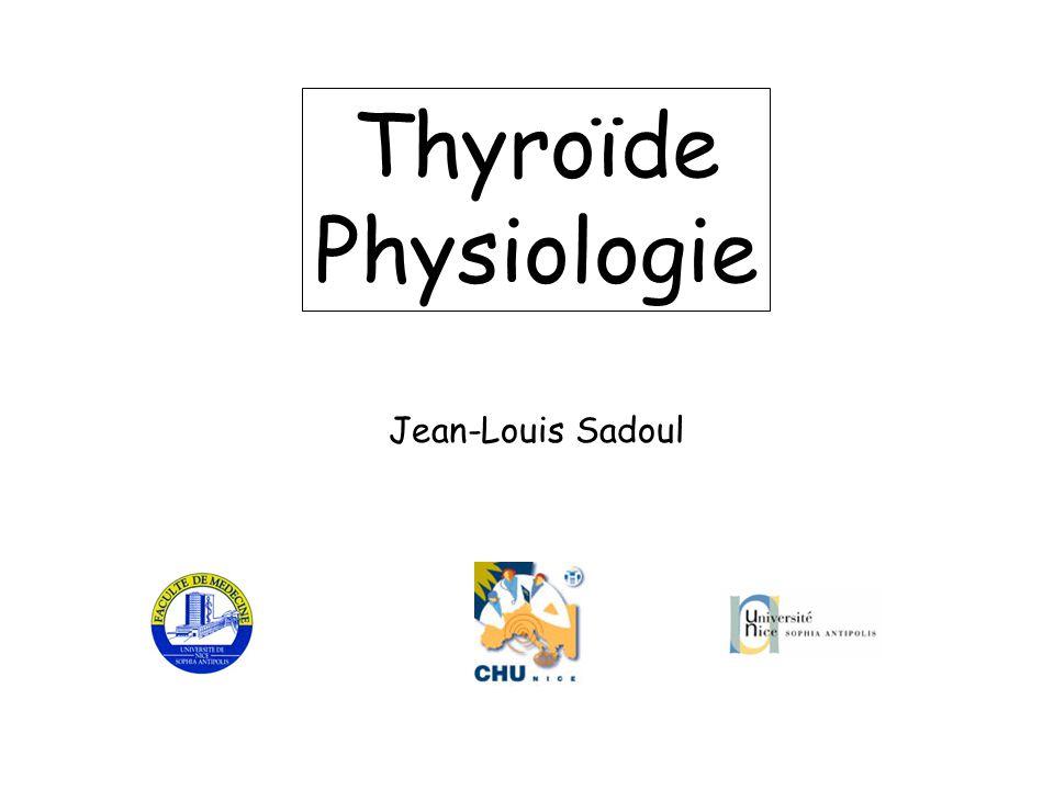 Thyroïde Physiologie Jean-Louis Sadoul