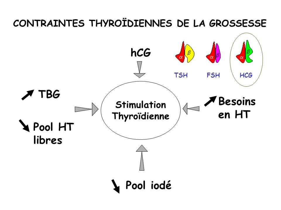 CONTRAINTES THYROÏDIENNES DE LA GROSSESSE Stimulation Thyroïdienne