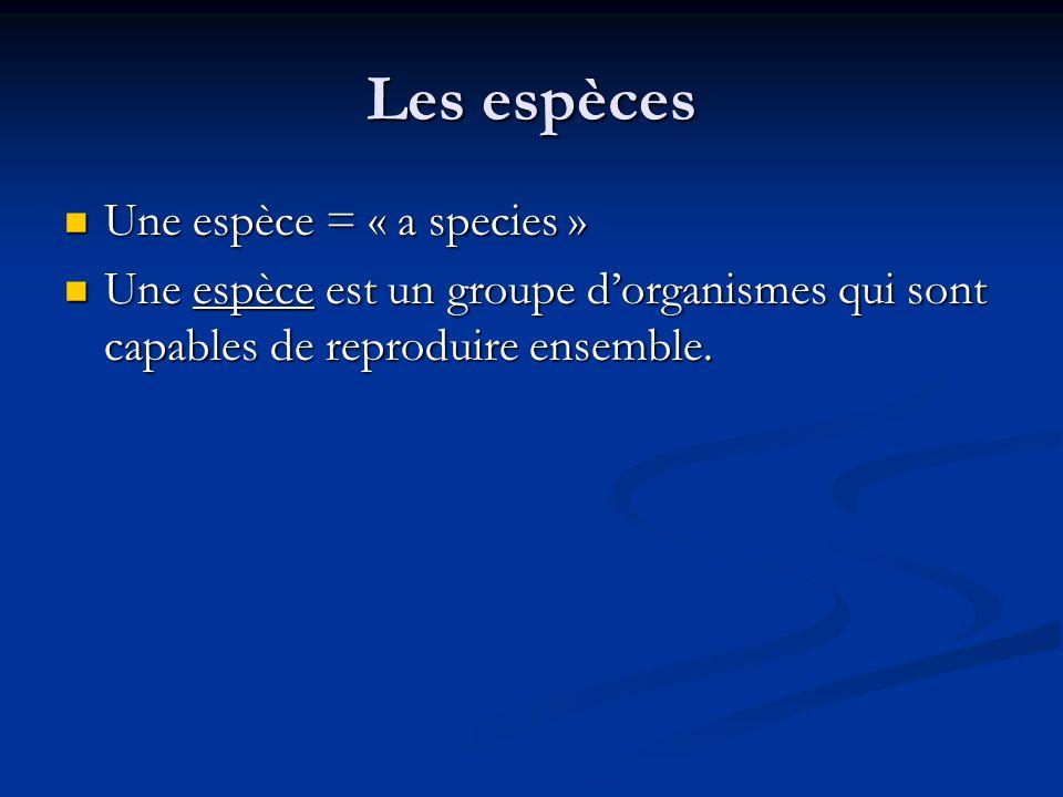 Les espèces Une espèce = « a species »