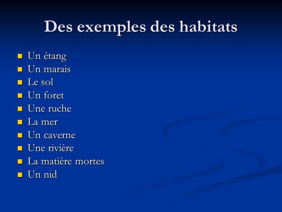Des exemples des habitats