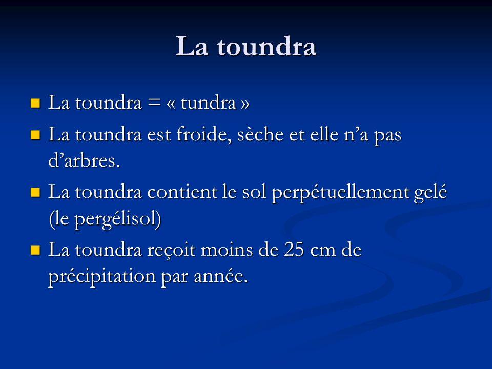 La toundra La toundra = « tundra »