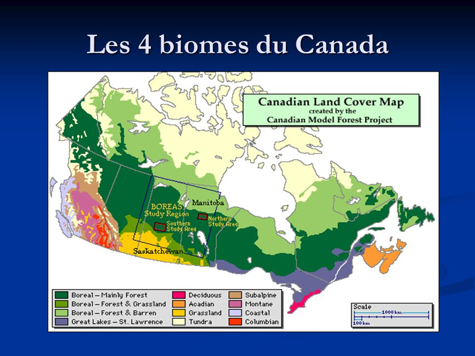 Les 4 biomes du Canada